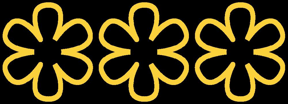 michelin-guide-restaurant-michelin-star.png