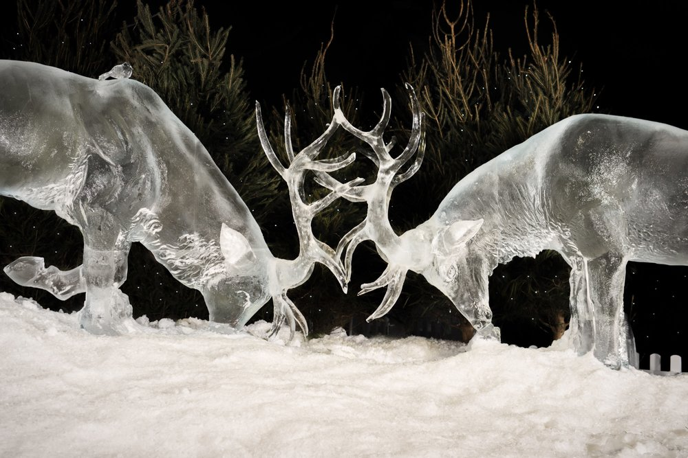 Stags_Fighting_?_Ice_Adventure_2017_?_ZAC_and_ZAC_?_Hamilton_Ice_Sculptors.jpg