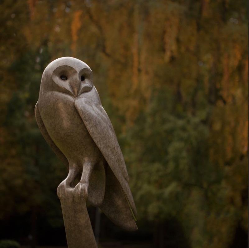 HR THE SODEN COLLECTION Barn Owl.jpg