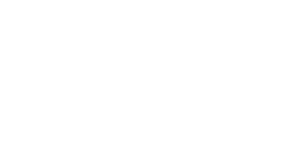 Logo North White.png