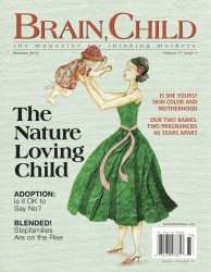 Brain, Child Summer 2013 cover