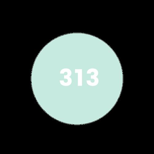 - led by 313 volunteer hosts…