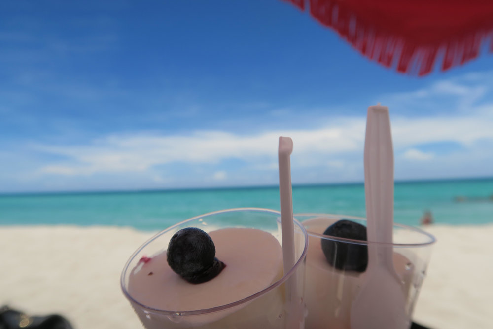 beach food compot blackberry icecream.jpg