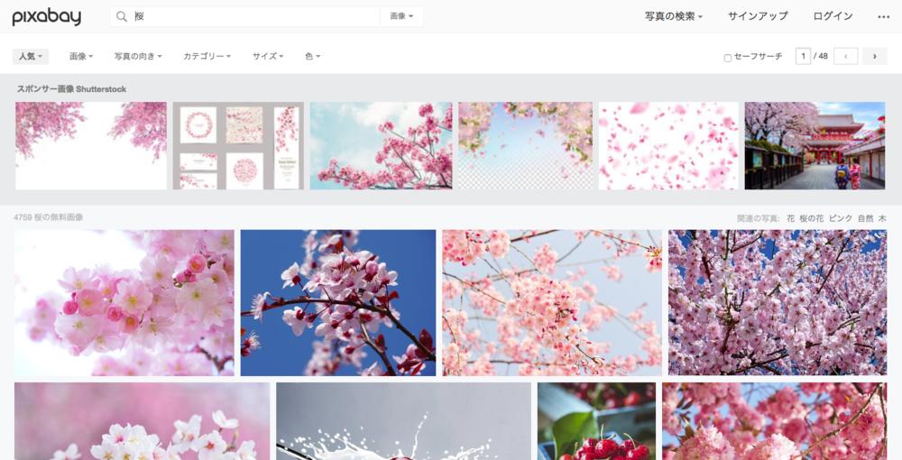 桜 画像 · Pixabay · 無料画像をダウンロード.png