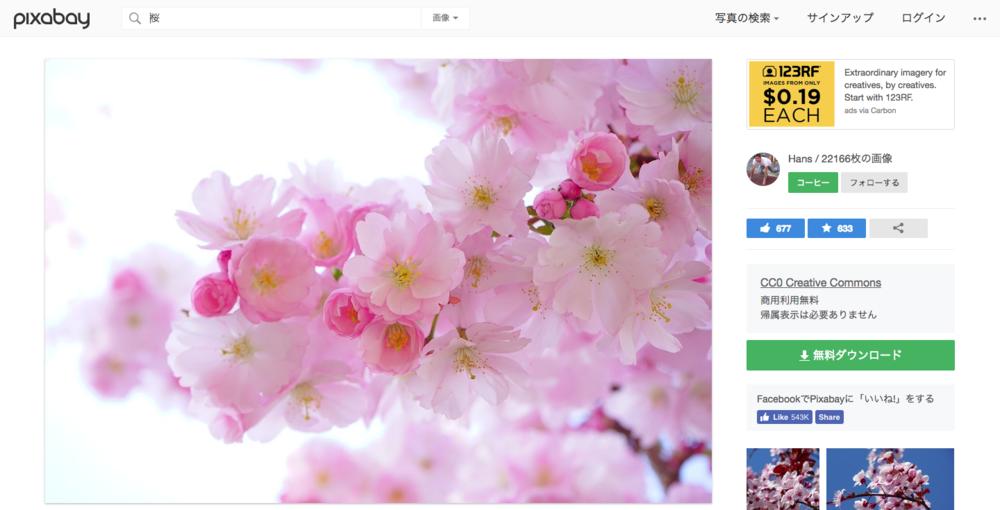 日本の桜の木 花 春 · Pixabayの無料写真.png