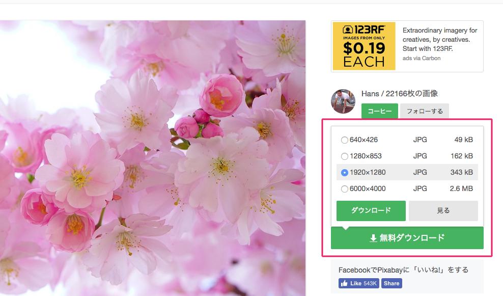 日本の桜の木 花 春 · Pixabayの無料写真 (1).png