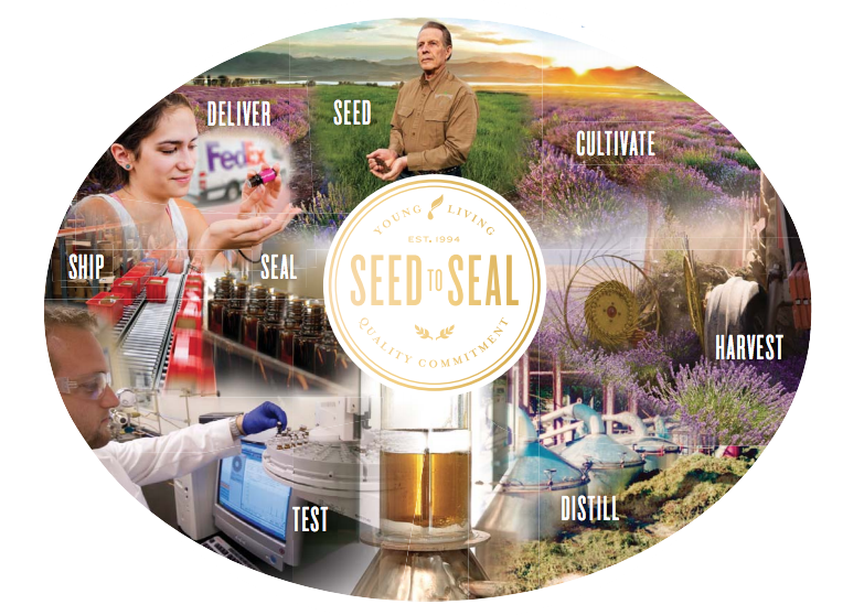 Young Living Essential Oils Seed to Seal.png