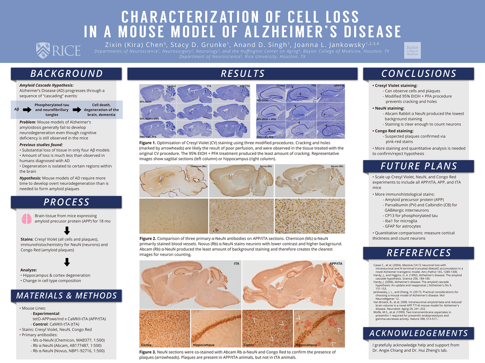 research posters -