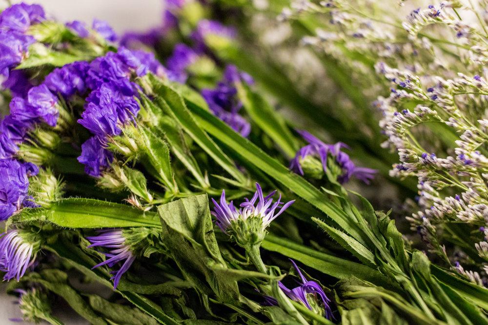Purple Color Story - Details 12