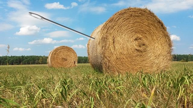needle-in-a-haystack-1706106_640.jpg