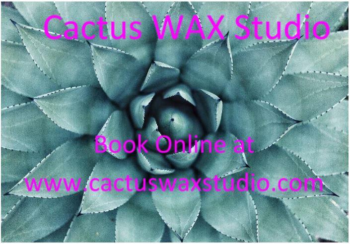 Cactus WaxStudio.JPG
