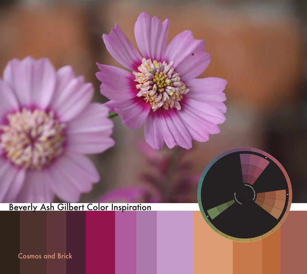 ColorInspiration_CosmosBrick_small.jpg