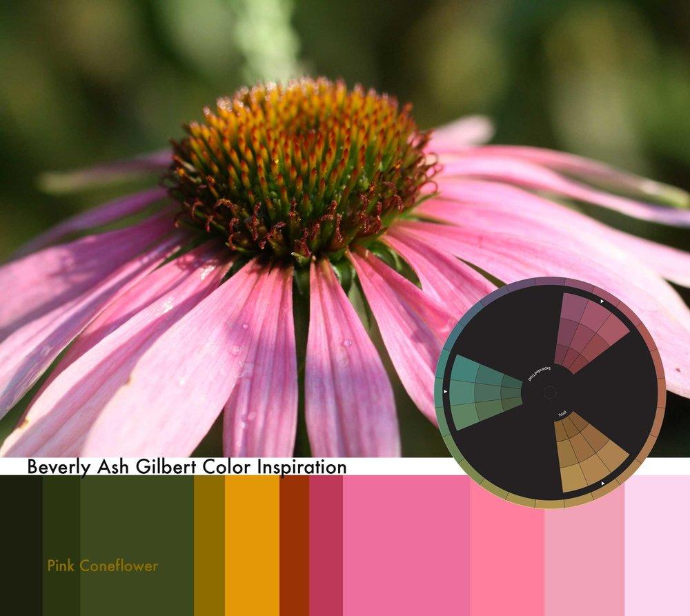 ColorInspiration_PinkConeflower.jpg