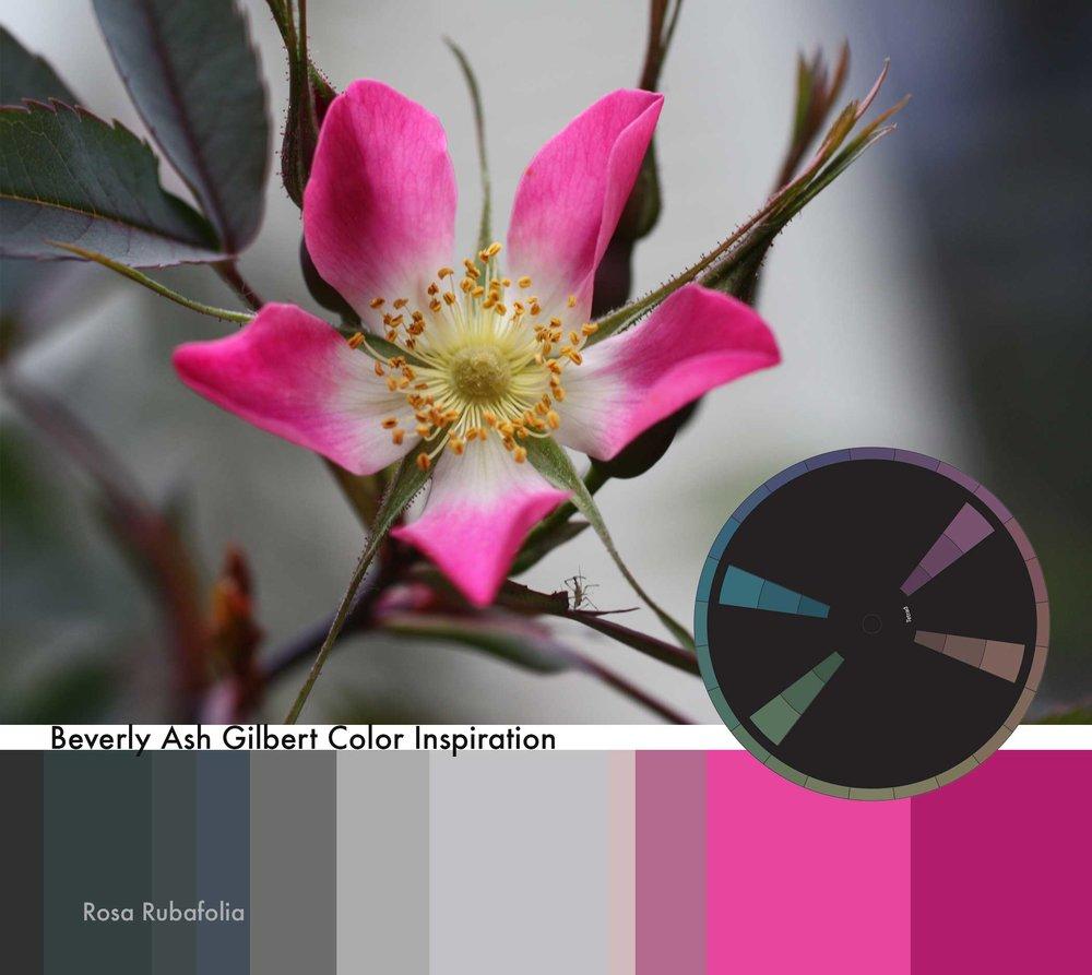 ColorInspiration_RosaRubafolia_small.jpg