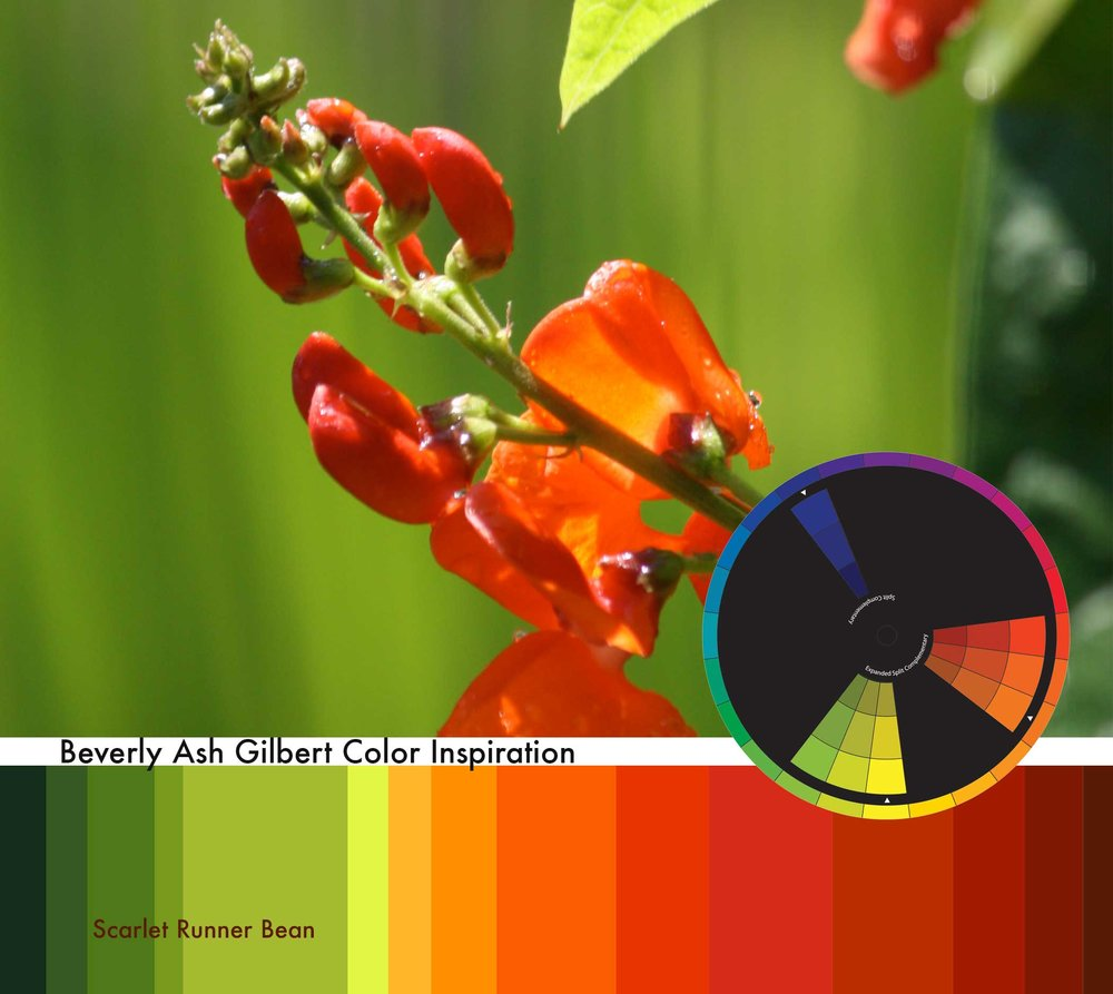 ColorInspiration_ScarletRunnerBean_small.jpg
