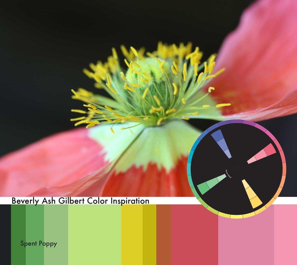 ColorInspiration_SpentPoppy.jpg