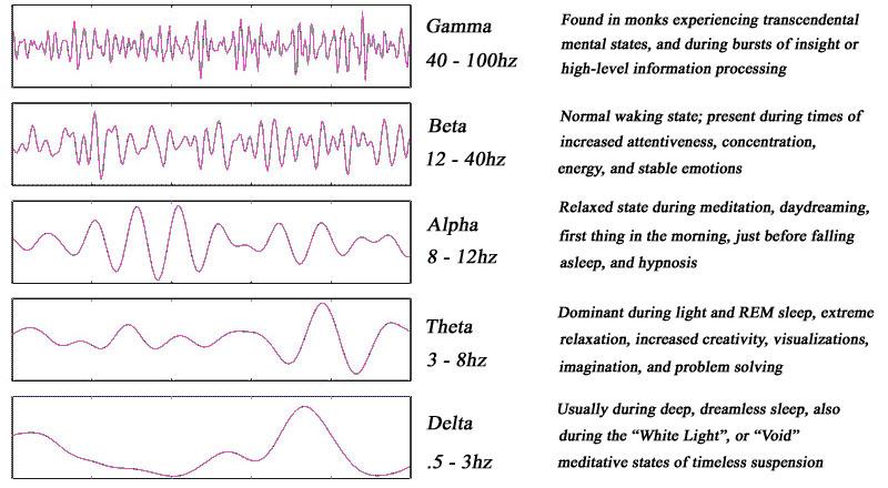 brainwaves a-g copy.jpg