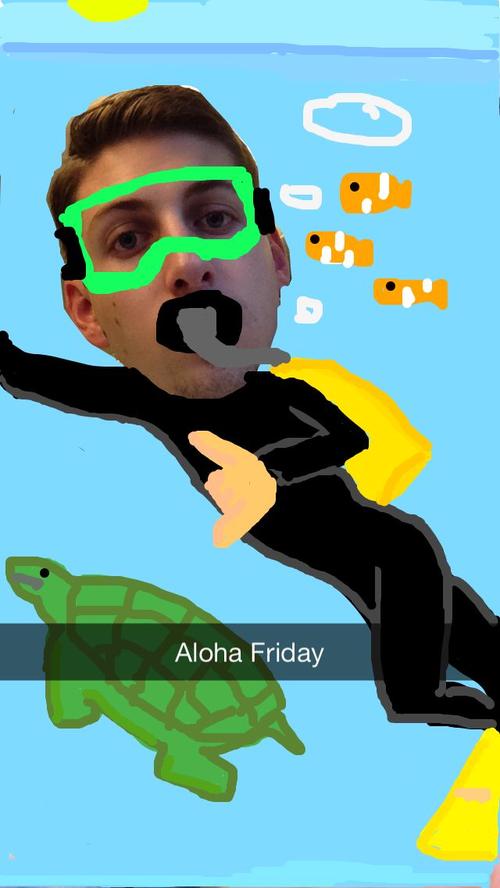 Snap_Aloha3.png
