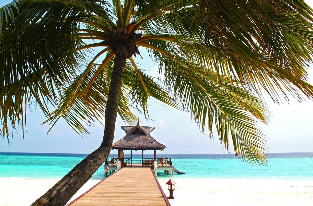 premium travel -