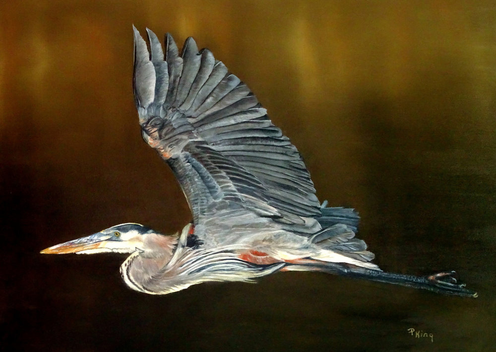 """GREAT BLUE HERON"",  Oil on Canvas Board,  20x24 inches,  $900"