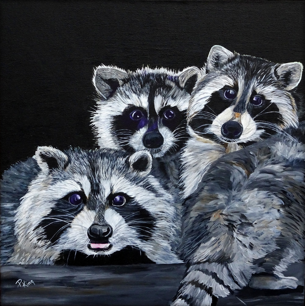 """CURIOUS EYES"",  Acrylic on Canvas,  20x20 inches,  $600"