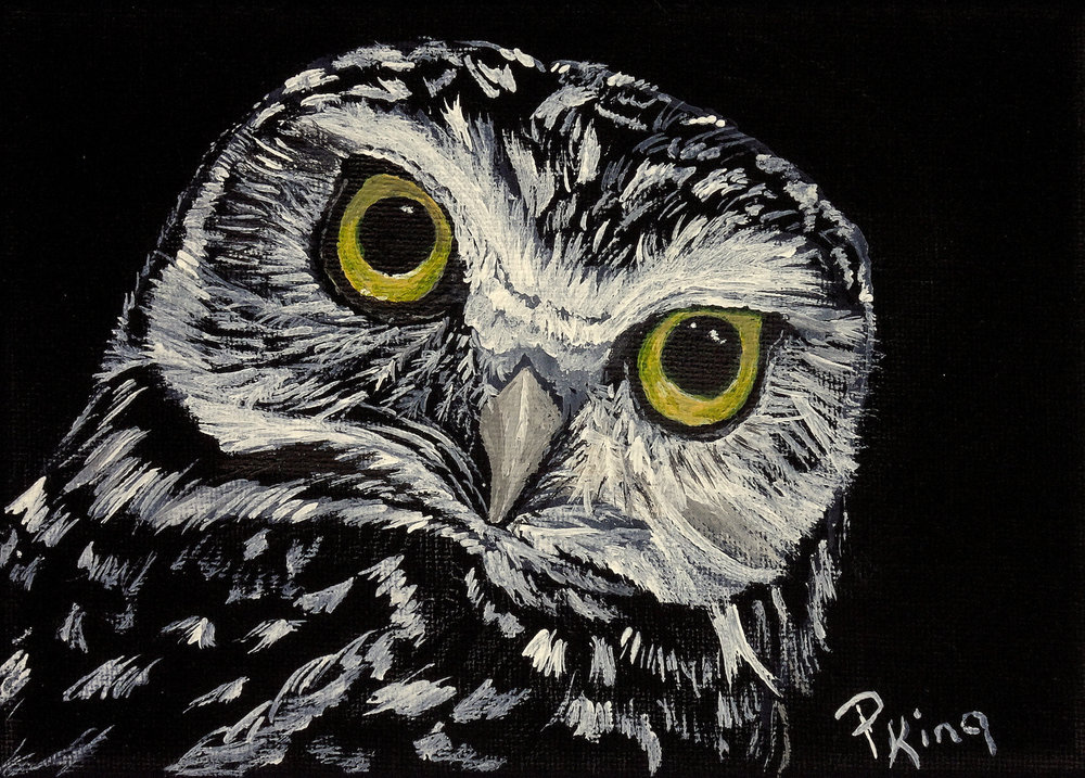 """""""BURROWING OWL"""",  Acrylic on Wrapped Canvas,  7x5x5/8 inches,  $75"""