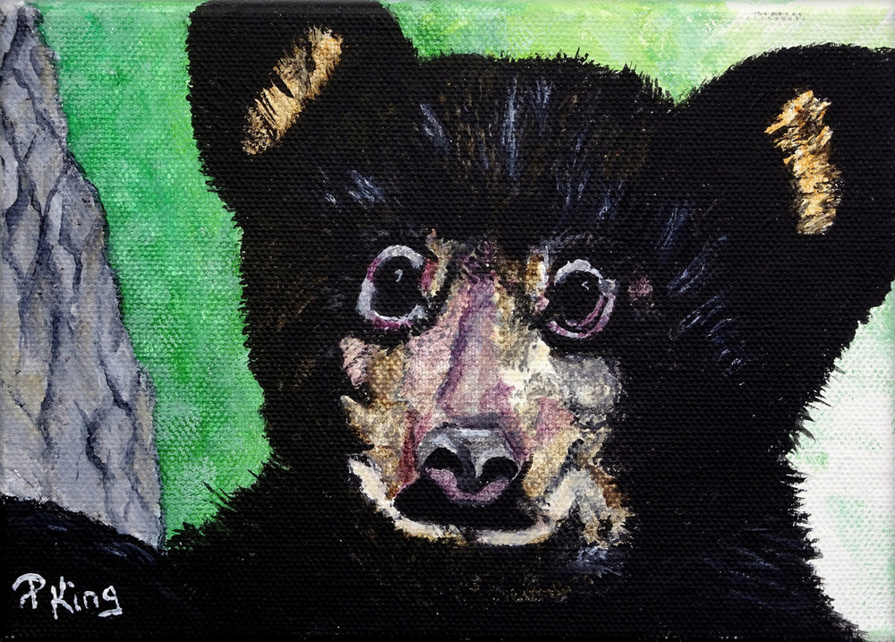 """""""BLACK MOUNTAIN CUB"""",  Acrylic on Wrapped Canvas,  7x5x1.25 inches,  $75"""