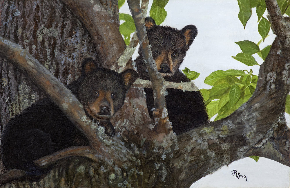 """BEAR NECESSITY"",  Giclee Print on Paper,  9x14 inches,  $75"