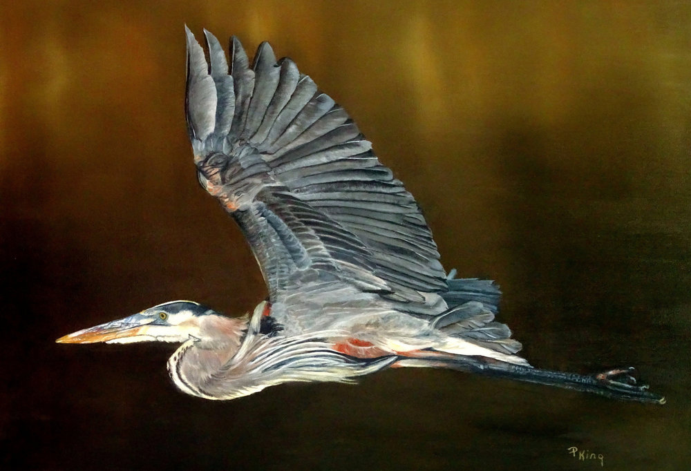 Blue Heron, Animal & Bird Fine Art Painting, Peggy King
