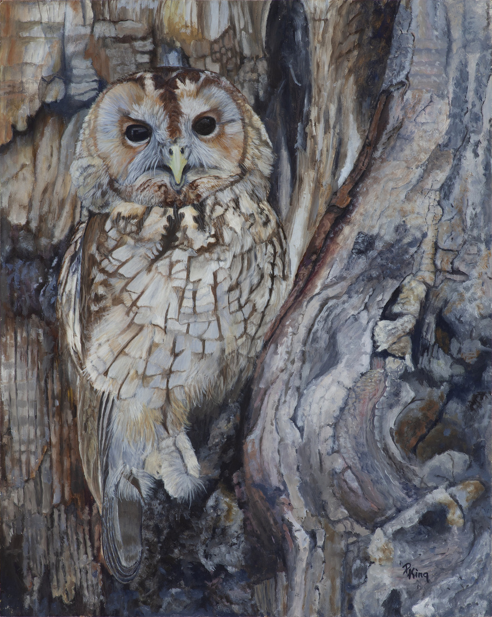 """TAWNY OWL"",  Oil on Canvas Board,  16x20 inches,  SOLD"