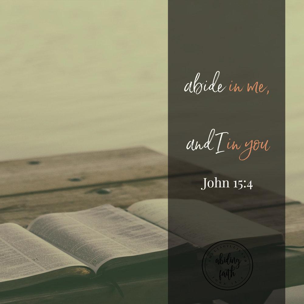 abide in me.jpg
