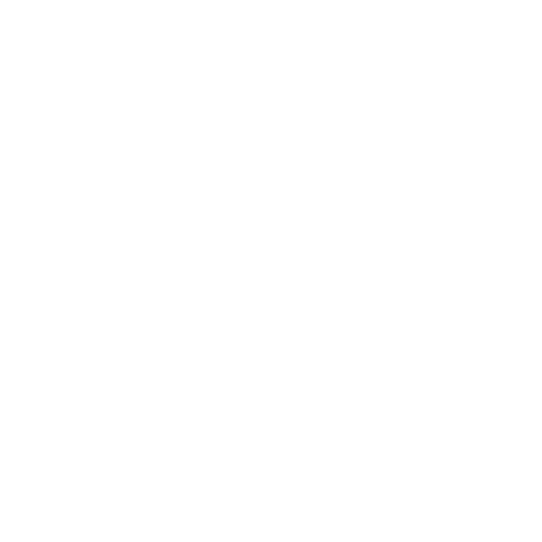 The Snow Lake Initiative