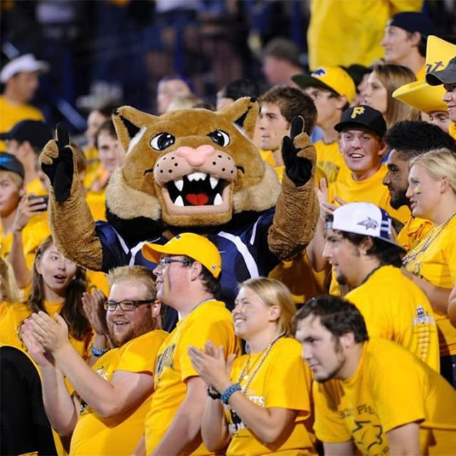 Go Cats Go!! We're opening early tomorrow ⏰ Come in before the parade and grab breakfast burritos and soup to go. Breakfast burritos available from 9:30am and lunch menus starts at 11am.⠀⠀⠀⠀⠀⠀⠀⠀⠀ ⠀⠀⠀⠀⠀⠀⠀⠀⠀ 📸: @montanastateuniversity⠀⠀⠀⠀⠀⠀⠀⠀⠀ ⠀⠀⠀⠀⠀⠀⠀⠀⠀ #torobzoeman #toro #msuhomecoming #msubobcats @msubobcats