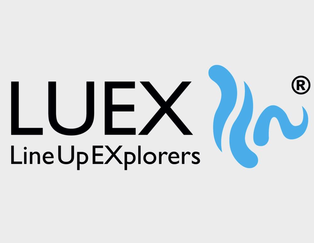 Catalog Manager @ LUEX.com - January 2017 - Presentwww.luex.com