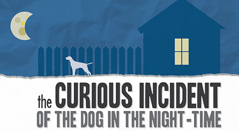 curious incident icon.jpg