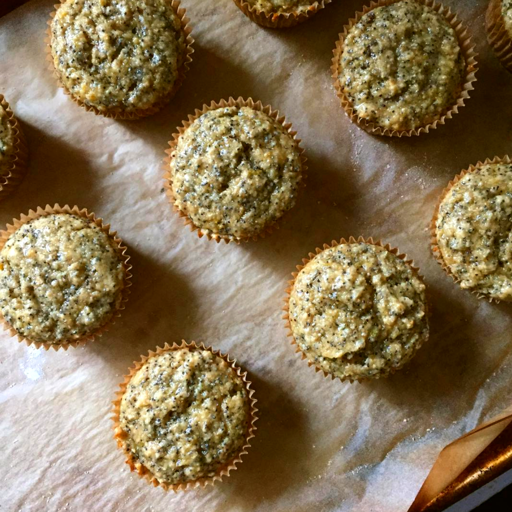 Lemon Poppyseed Muffins.png