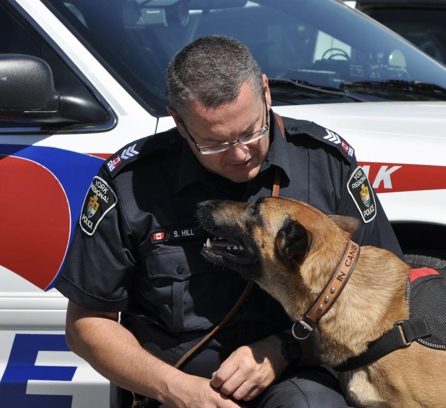yrp_police_dog_jpg