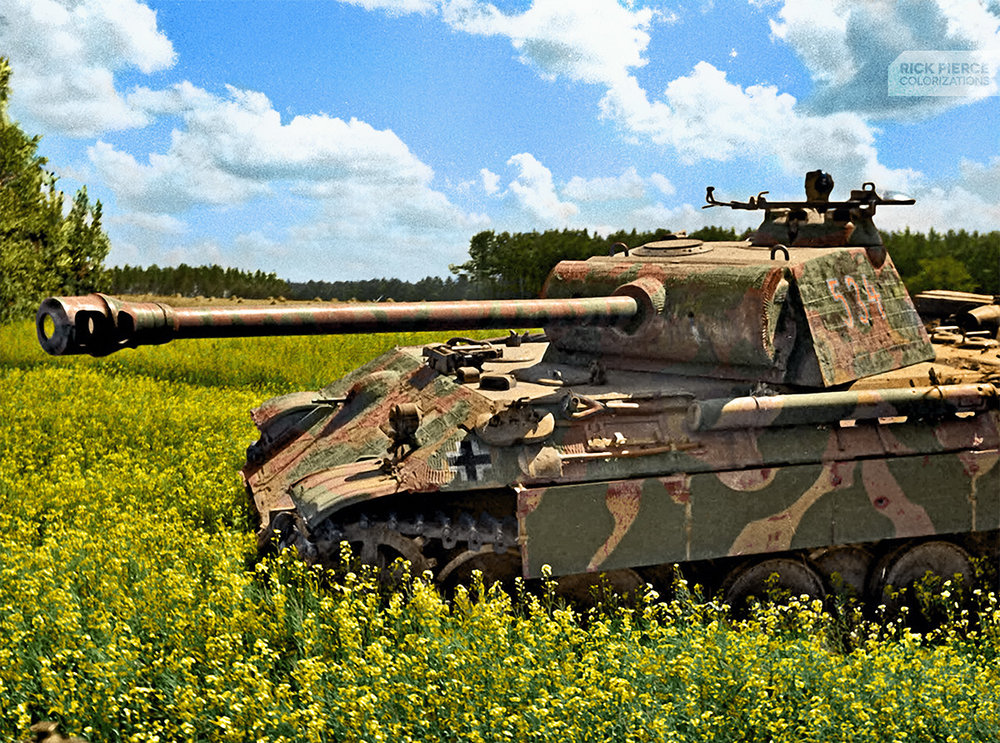 Panther Tank of the Wiking Armored Division in Eastern Poland