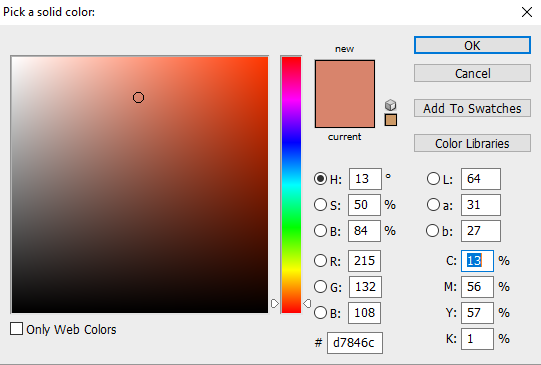 Step 12 - Select A Color You Want For Skin.png