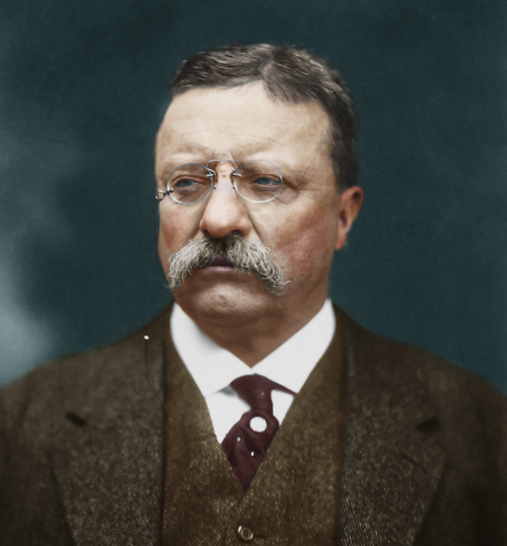 Theodore Roosevelt in 1915. Colorization by  HistoryColored