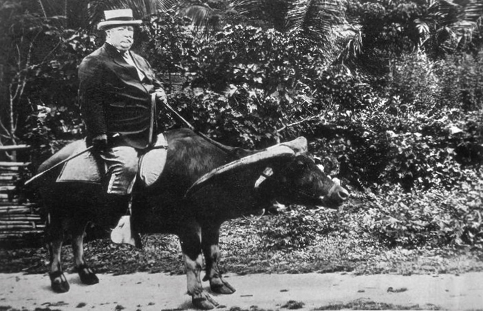 Future 27th President of the United States, Governor-General of the Philippines William Howard Taft, riding a water buffalo in the Philippines in c. 1904.