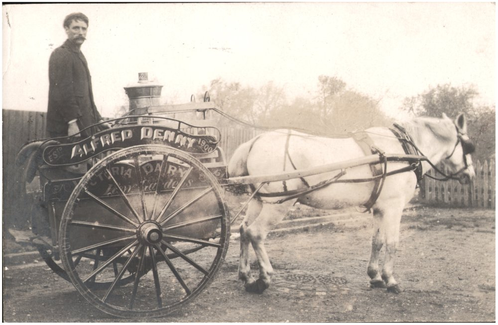 Photograph of a Victorian milkman standing in a horse-drawn cart sometime in the 1800s.