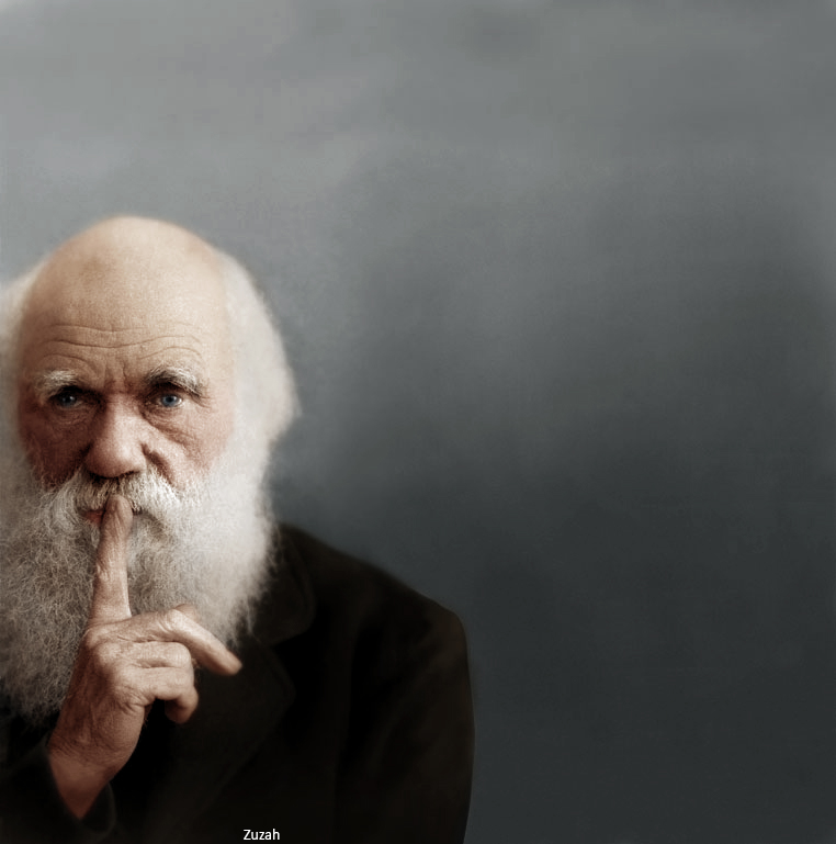 An elderly Charles Darwin in color. Colorization by  Mads Madsen