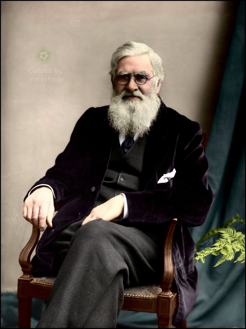 A colored photograph Alfred Russel Wallace taken in c. 1895. Colorization by  Neitshade