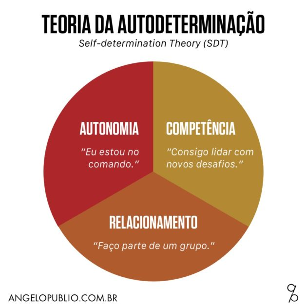 Teoria da Autodeterminação (Self-determination Theory - SDT)