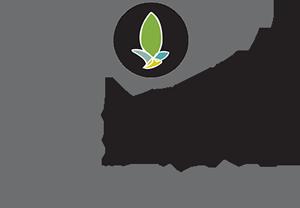 Renew-Medispa-Logo.png