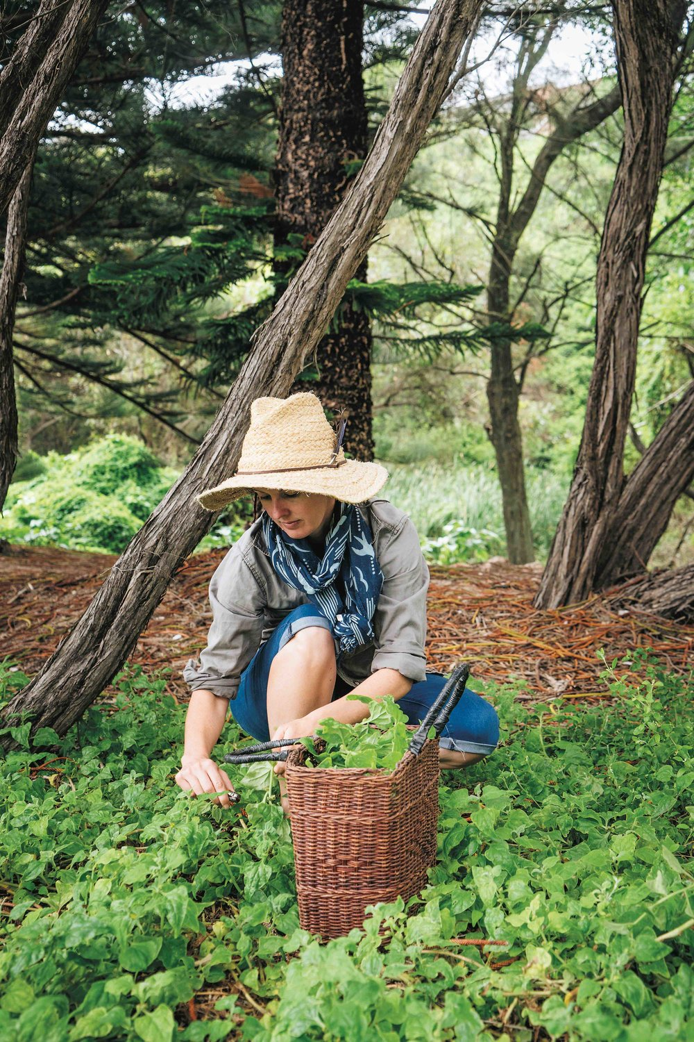 Image supplied by Milkwood Permaculture.