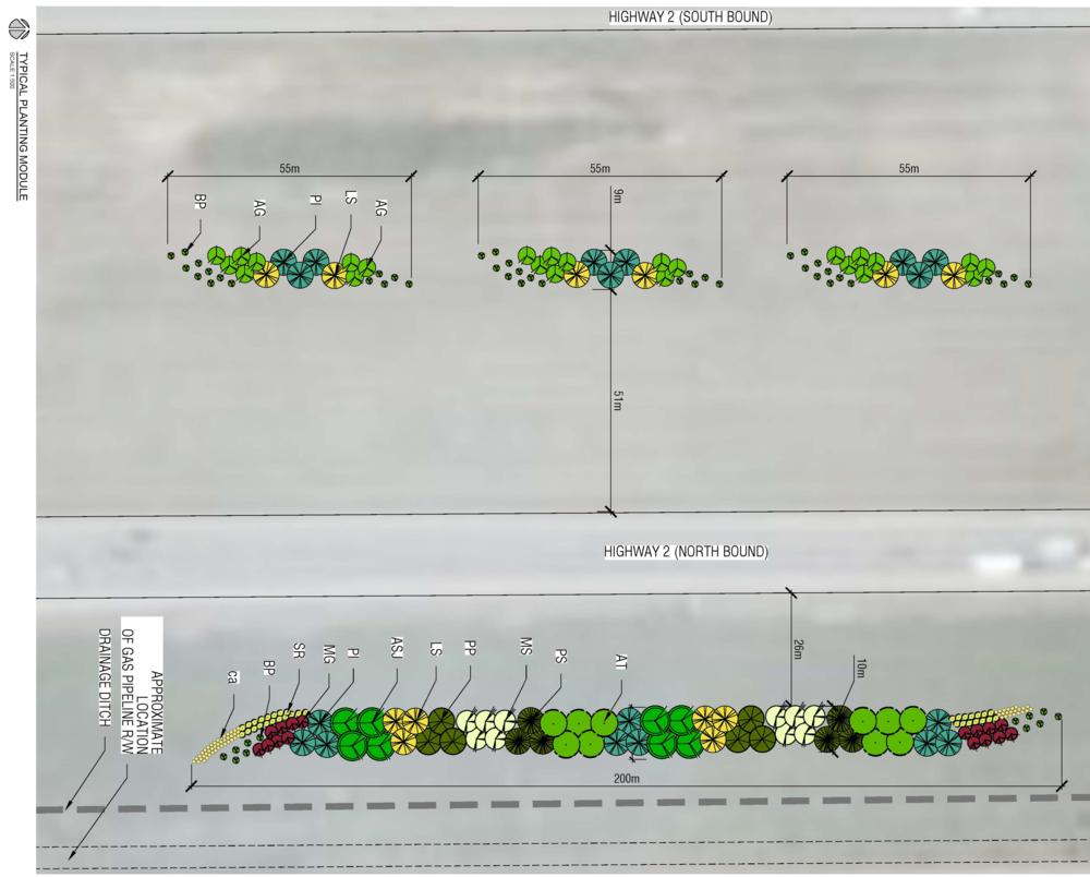 QE2 - PlantingModuleLayout.png