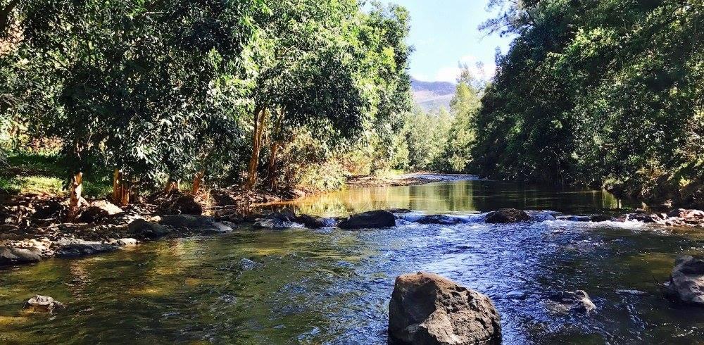 gite-le-panoramique-rivière-noumea-nouvelle-caledonie.nc.jpg