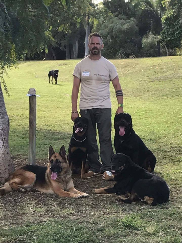 dog-training-chiens-noumea-nouvelle-caledonie.nc.jpg